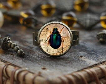 Insect ring, Little Bug ring, Insect jewelry, bug ring, bug jewelry, vintage style Insect ring, Victorian Insect bug jewelry