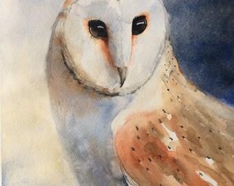Barn Owl Original Watercolor Painting
