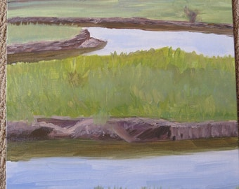 Marshes of Marshfield