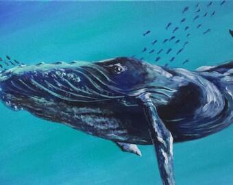 H.B. Whale