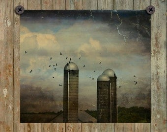 Old Silos, Flying Birds, Countryside Art Image, Aged And Distressed, Rural, Architecture Photograph, Dark Sky - Three Silos