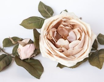 2 Stunning Vintage Inspired Roses In Antique Cream, Khaki and Blush Pink - Silk Artificial Flowers - ITEM 0857