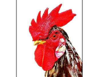 Rooster Poster Poster Instant Digital Download Art Print Bird Boho Mixed Media Modern Huge Brahma Red Comb Black White Gift Chicken Lover