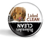"""Licked Clean or Dishwasher Clean Doxie Dachshund Magnet - 2 1/4"""" 2.25 inch"""