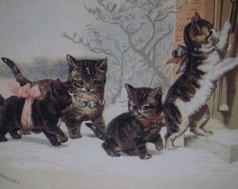 Playful Tiger Tabby Kitty Cats in the Snow - Vintage Cat Postcard - Vintage Reproduction