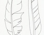 Original ink feather drawing ~ 2 sea bird feathers