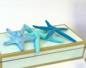 "Beach Decor - Painted Natural Starfish - One Color or One of Each - Set of 3 One Knobby & Two Finger Starfish - 3""-6"" wedding beach parties"