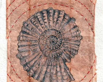 Drawing on teabag, ammonite shell, ink drawing, Kabbalah,