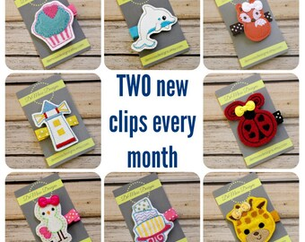 Clip of the Month Club, Two Felt Embroidered Clips a Month, 12 Months of Seasonal Hairclips, Delivered Each Month, Girl Hair Clips