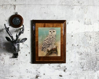 Vintage Wooden Plaque with Snowy Owl