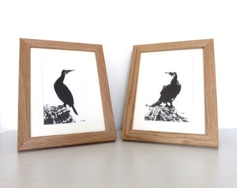 Pair of cormorant drawings, wildlife art, bird drawing, original art, charcoal drawing, pencil drawing, monochrome, seabird drawing