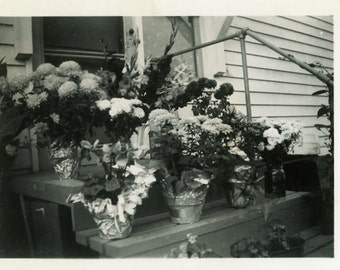 "Vintage Photo ""Smelling of Spring"" Bouquet Flower Pot Gift Snapshot Old Photo Black & White Photograph Found Paper Ephemera Vernacular - 111"