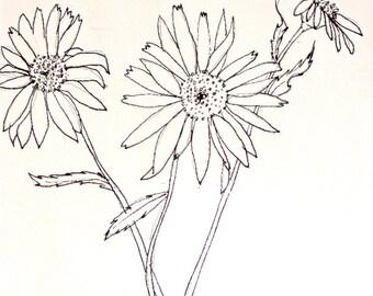 "Flowers, 5.5"" x 6"", original sketch, sketch, original drawing, original pencil drawing"