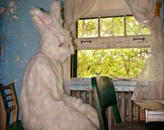 Creepy Rabbit Art, 5x5 Inch Print, Small Wall Art, Mask Photography, White Rabbit Costume, Anthropomorphic Art