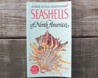 Vintage Seashells of North America Book / Golden Field Guide Book