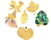 Lot of Vintage Leaf Brooches and Pendants - Gold Tone / Gold Plated - Aspen Leaf