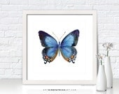 Blue Butterfly Painting, Butterfly Wall Art, Butterfly Print, Original Butterfly Watercolor, Butterfly Greeting Cards, 80 Imperial Blue