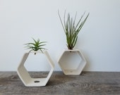 Hexagon Tabletop Air Plant Vase, Reversible Design