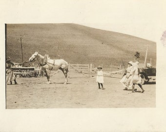 Poor Eddie - Antique 1910s Woman, Girls and Horse Silver Gelatin Print Real Photo Postcard