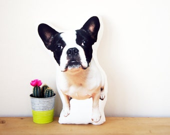 French Bulldog Pillow, Frenchie Pillow, Dog Pillow, French Bulldog Breed Pillow, Frenchie Cushion, French Bulldog Cushion, College Gift