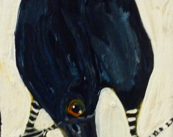 Crow Clown