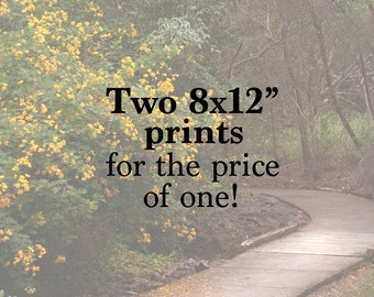 """Two Prints For The Price Of One - Fine Art Photography, Nature, Affordable Gift Ideas, Apartment Décor, Special Photo Offer - 8x12"""" Prints"""