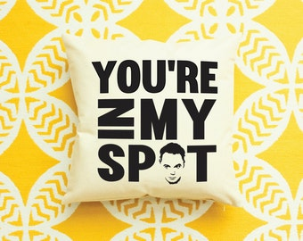 The Big Bang Theory Sheldon Cooper Pillow
