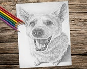 Coloring Book page, Printable coloring page, Adult Coloring Page, Instant download, dog coloring, grayscale coloring, coloring book adult