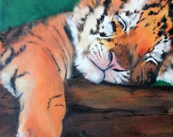 Napping Tiger Cub