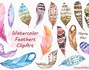 Watercolor Feathers Clipart, Feather clip art, Digital feathes, feather digital watercolor png, for Personal and Commercial Use