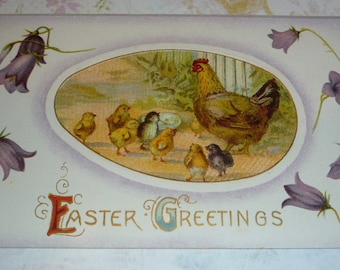 Mama Hen and Baby Chicks Surrounded by Purple Flowers Antique Easter Postcard
