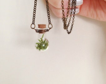 Little Moss Vial Necklace - 'Curious Forest' - Miniature Glass Corked Vial with Real Moss Pendant