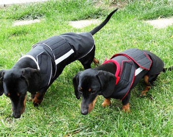 Dachshund Winter dog coat with underbelly protection - Dog Jacket - Custom made Dog Raincoat, Waterproof / Fleece -  MADE TO ORDER