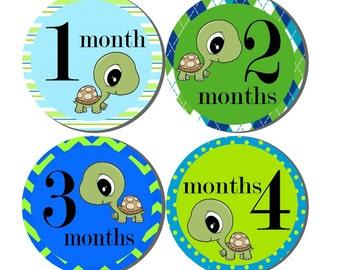 Monthly Stickers- Milestone Sticker- Baby Month Stickers- Baby Boy Month Stickers- 12 month stickers- Milestone Baby Month Stickers- B31