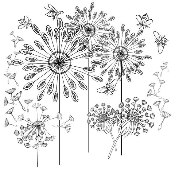 This is an image of Rare Dandelion Coloring Page