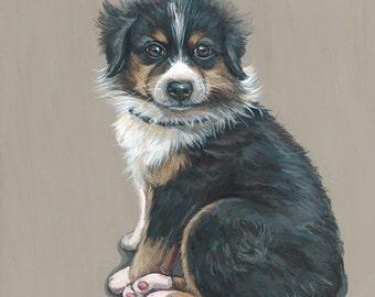 Dog Portrait, custom pet portrait, dog painting, Australian Sheppard, pet painting, puppy painting, 12x12 on wooden canvas