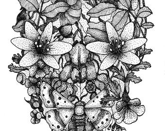 Floral Sugar Skull | A4 / 8.5x11 Art Print