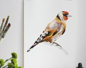 Garden Bird Print - Goldfinch