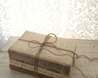 Farmhouse Wedding, French Nordic, Paris Home, Repurposed Book, Books for display, 3 BOOKS, Chic, Faux Vellum, Trending Home Decor