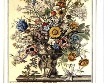 November Floral Botanical Illustration- Monthly Blooming Flower Arrangement Unframed Art Print Bowles Casteel- baby wedding anniversary gift