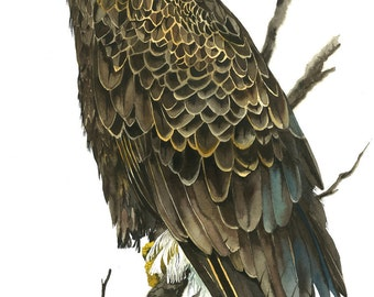 Limited Edition GICLEE MINI-PRINT / Watercolor Painting of a Bald Eagle
