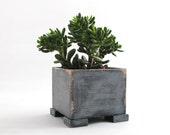 Herb planter, Plant pot, Wooden planter, Windowsill Flowerpot, Box for Herbs, Handmade box, Herb garden, Succulent planter, Plant holder