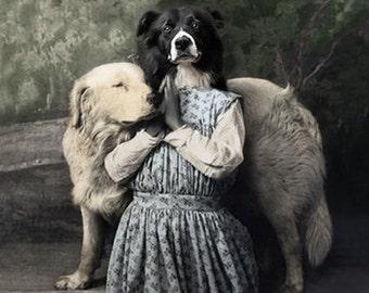 Burnadette, Vintage Praying Dog Print, Religious Wall Art, Border Collie Print, Anthropomorphic, Victorian Wall Art, Whimsical Dog Print