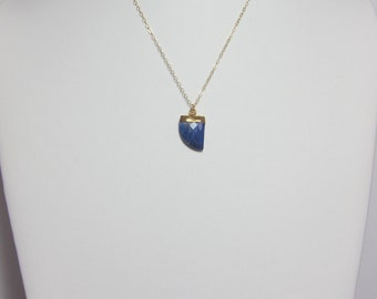 Lapis Horn necklace - 14k gold filled chain.