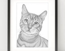 curious cat original animal illustration black and white