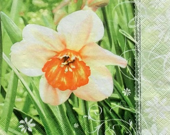 Set of 2 pcs 3-ply ''Narcissus'' spring paper napkins for Decoupage or collectibles 33x33cm, Floral napkins, Servilletas, Servetten