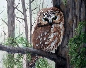 Owl - Saw whet owl - owl painting - bird of prey - bird painting - bird print