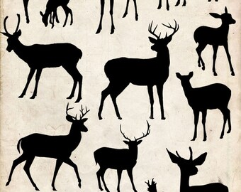 Deer Silhouette ,15 png Clipart , Instant Download,  clipart,deers png