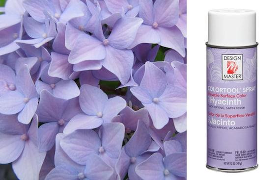 Hyacinth Design Master Spray Paint Craft Spray Design