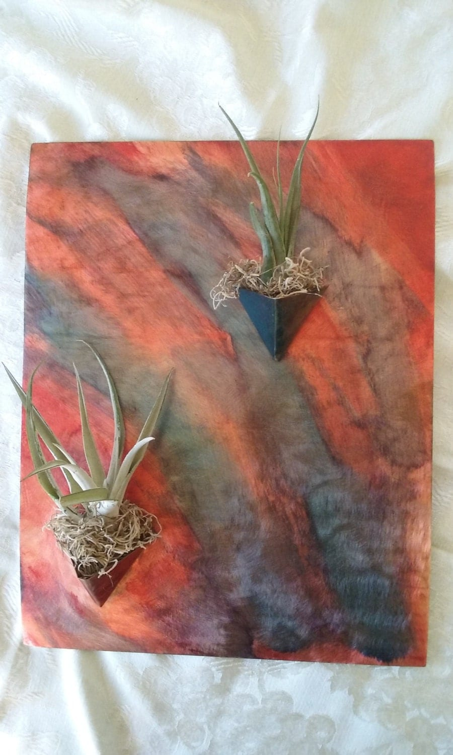 Metal wall art copper air plant vessel for Air plant wall art